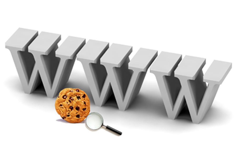 Internetni piškotki (Cookies)