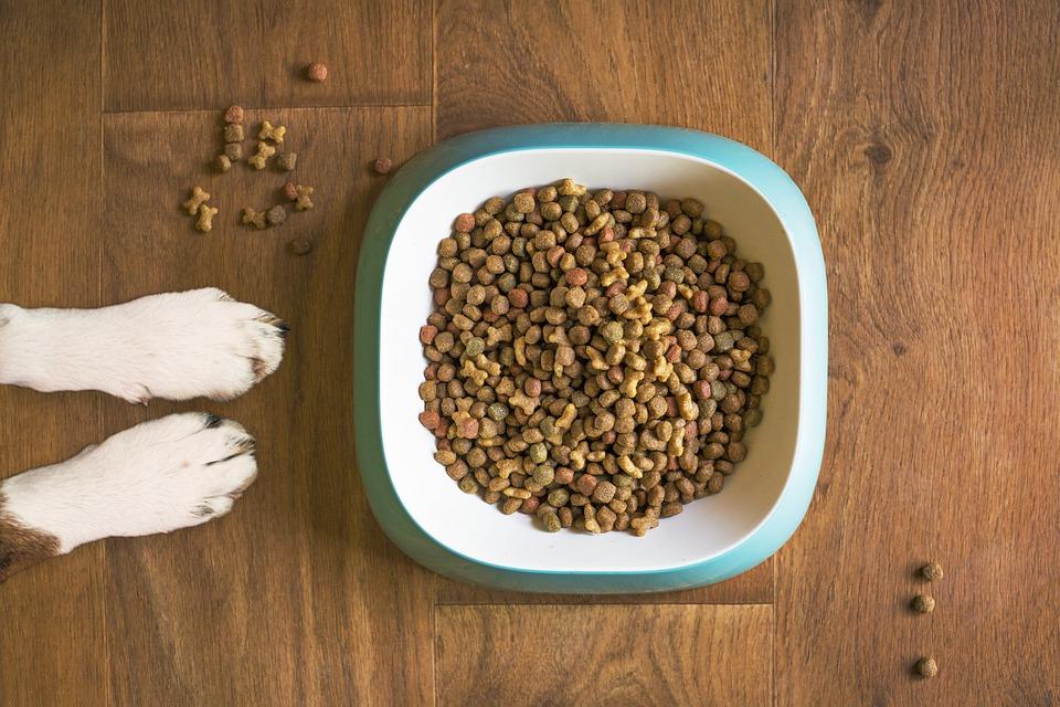 Hladno stiskana hrana za pse